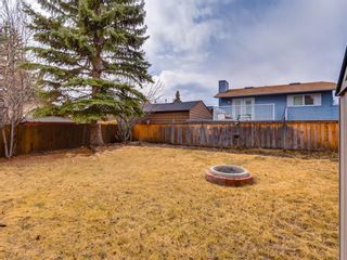 Photo 40: 15415 Deer Side Road SE in Calgary: Deer Run Detached for sale : MLS®# A1060815