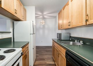 Photo 5: 338 1421 7 Avenue NW in Calgary: Hillhurst Apartment for sale : MLS®# A1095896
