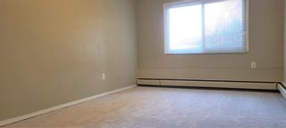 Photo 13: 101 3518 44 Street SW in Calgary: Glenbrook Apartment for sale : MLS®# A1093366