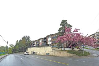 """Photo 2: 210 2551 WILLOW Lane in Abbotsford: Central Abbotsford Condo for sale in """"Valley View Manor"""" : MLS®# R2204247"""
