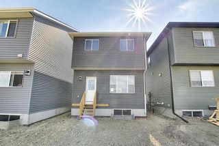 Photo 44: 77 Corner  Ridge Mews NE in Calgary: Cornerstone Detached for sale : MLS®# A1116655