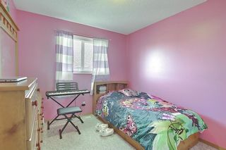 Photo 26: 145 Taravista Crescent NE in Calgary: Taradale Detached for sale : MLS®# A1125771