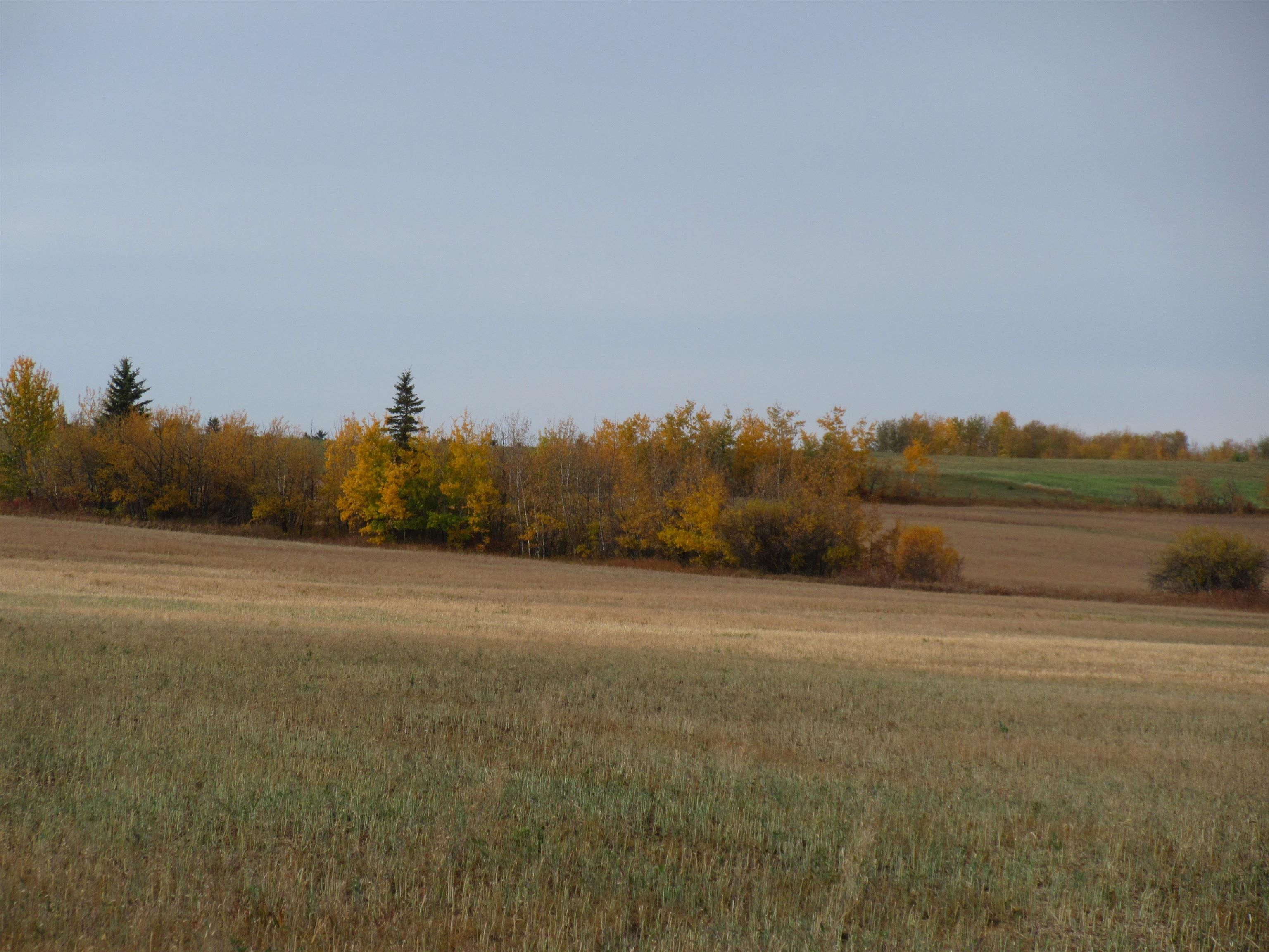 Main Photo: RR 270 North of Hwy 37: Rural Sturgeon County Rural Land/Vacant Lot for sale : MLS®# E4265129