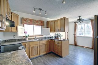 Photo 4: 317 Big Springs Court SE: Airdrie Detached for sale : MLS®# A1152002