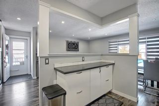 Photo 17: 1027 Penrith Crescent SE in Calgary: Penbrooke Meadows Detached for sale : MLS®# A1104837