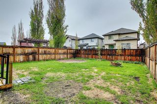 Photo 33: 56 Cranwell Lane SE in Calgary: Cranston Detached for sale : MLS®# A1111617