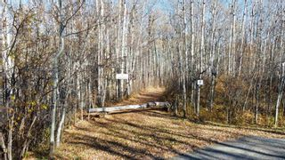 Photo 3: 15 54023 RGE RD 280: Rural Parkland County Rural Land/Vacant Lot for sale : MLS®# E4266505