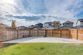 Photo 24: 345 NOLANFIELD Way NW in Calgary: Nolan Hill Detached for sale : MLS®# A1037738