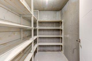 Photo 39: 14412 87 Avenue in Edmonton: Zone 10 House for sale : MLS®# E4260587