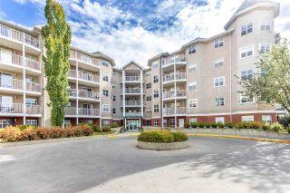 Photo 38: 102 8315 83 Street in Edmonton: Zone 18 Condo for sale : MLS®# E4229609
