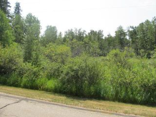 Photo 2: 398 52152 RR 210: Rural Strathcona County Rural Land/Vacant Lot for sale : MLS®# E4254227
