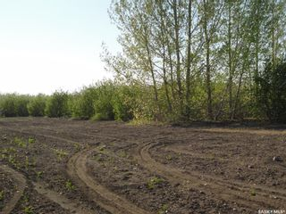 Photo 3: Lot-C Marina Orchard in Blucher: Lot/Land for sale (Blucher Rm No. 343)  : MLS®# SK820822