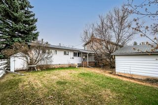 Photo 5: 6123 34 Street SW in Calgary: Lakeview Detached for sale : MLS®# A1104581