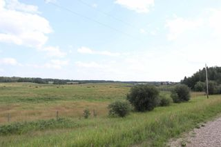 Photo 8: Twp 510 RR 33: Rural Leduc County Rural Land/Vacant Lot for sale : MLS®# E4256128