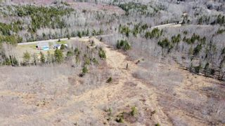 Photo 12: 8532 Trunk 4 Highway in Telford: 108-Rural Pictou County Vacant Land for sale (Northern Region)  : MLS®# 202108300