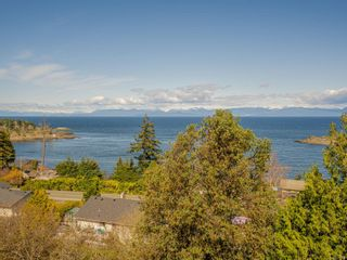 Photo 56: 3868 Gulfview Dr in : Na North Nanaimo House for sale (Nanaimo)  : MLS®# 871769