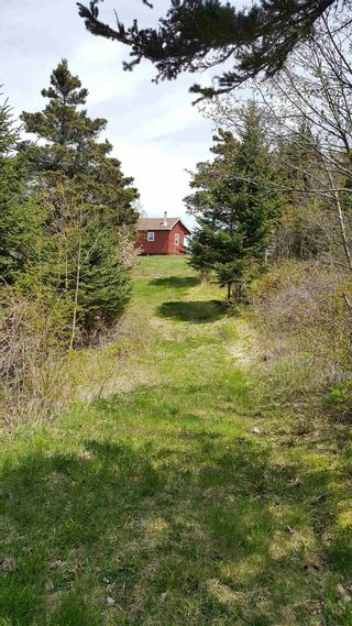 Photo 4: Lot 1 Tommy Branch in Little River: 401-Digby County Vacant Land for sale (Annapolis Valley)  : MLS®# 202101348