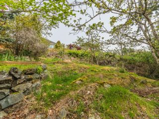 Photo 47: 3339 Stephenson Point Rd in : Na Departure Bay House for sale (Nanaimo)  : MLS®# 874392