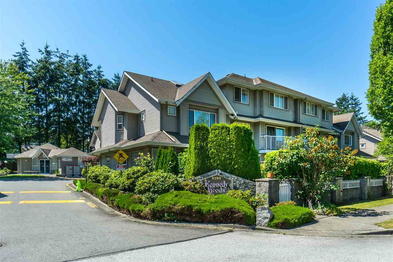 "Main Photo: 8 8289 121A Street in Surrey: Queen Mary Park Surrey Townhouse for sale in ""KENNEDY WOODS"" : MLS®# R2281618"