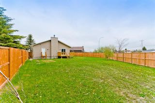 Photo 36: 45 Martinview Crescent NE in Calgary: Martindale Detached for sale : MLS®# A1112618