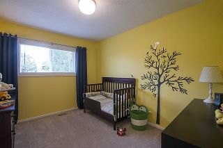 Photo 9: 3121 BABICH Street in Abbotsford: Central Abbotsford House for sale : MLS®# R2179569