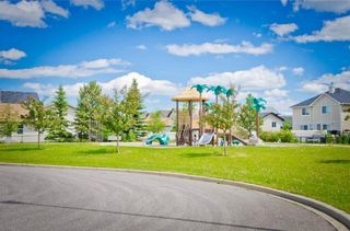 Photo 20: 159 Cranberry Green SE in Calgary: Cranston House for sale : MLS®# C4123286