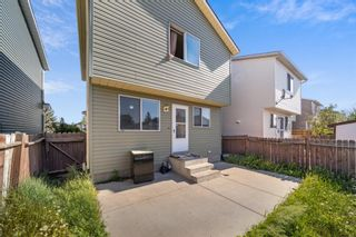 Photo 21: 120 Martinbrook Road NE in Calgary: Martindale Detached for sale : MLS®# A1113163