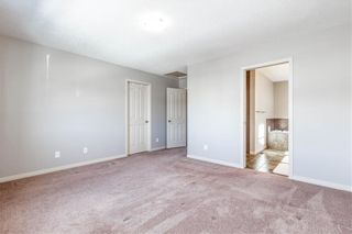 Photo 18: 360 COPPERPOND Boulevard SE in Calgary: Copperfield Detached for sale : MLS®# C4233493