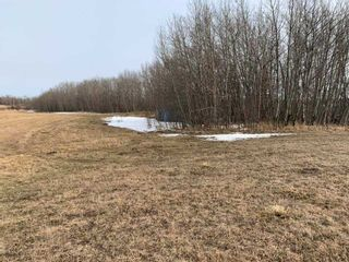 Photo 5: TWP Road 515 Range Road 220: Rural Strathcona County Rural Land/Vacant Lot for sale : MLS®# E4236521