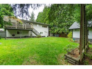 Photo 30: 6782 130 Street in Surrey: West Newton House for sale : MLS®# R2509281