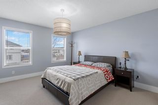 Photo 21: 19 Copperfield Terrace SE in Calgary: Copperfield Detached for sale : MLS®# A1062283