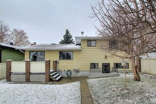 Photo 46: 140 Thames Close NW in Calgary: Thorncliffe Detached for sale : MLS®# A1097862