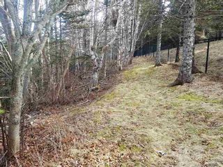 Photo 3: LOT 15 Fundy Bay Drive in Victoria Harbour: 404-Kings County Vacant Land for sale (Annapolis Valley)  : MLS®# 202105997