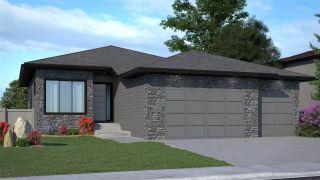 Photo 1: 12807 202 Street NW in Edmonton: Zone 59 House for sale : MLS®# E4225814