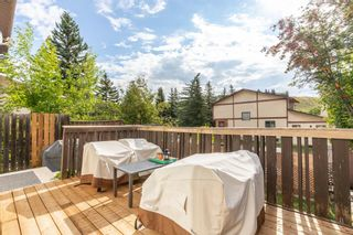 Photo 38: 28 EDGEFORD Road NW in Calgary: Edgemont Detached for sale : MLS®# A1023465