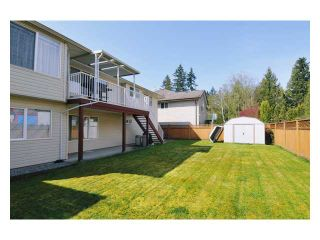 """Photo 10: 23943 115TH Avenue in Maple Ridge: Cottonwood MR House for sale in """"TWIN BROOKS"""" : MLS®# V822106"""