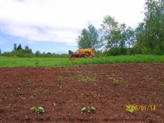Photo 4: 9641 HIGHWAY 221 in Canning: 404-Kings County Residential for sale (Annapolis Valley)  : MLS®# 201707344