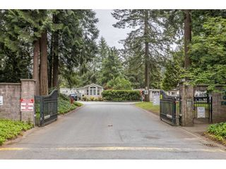 """Photo 21: 74 9080 198 Street in Langley: Walnut Grove Manufactured Home for sale in """"Forest Green Estates"""" : MLS®# R2457126"""
