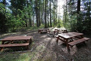 Photo 16: 4180 Squilax Anglemont Road in Scotch Creek: North Shuswap House for sale (Shuswap)  : MLS®# 10078424