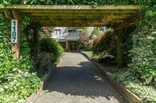 """Photo 2: 206 1187 PIPELINE Road in Coquitlam: New Horizons Condo for sale in """"PINE COURT"""" : MLS®# R2616614"""