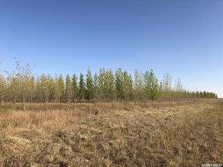 Photo 12: Greenfield Section RM 158 in Edenwold: Farm for sale (Edenwold Rm No. 158)  : MLS®# SK848878