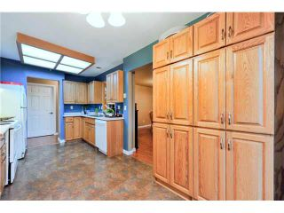 "Photo 11: 303 1132 DUFFERIN Street in Coquitlam: Eagle Ridge CQ Condo for sale in ""CREEKSIDE"" : MLS®# V1098509"