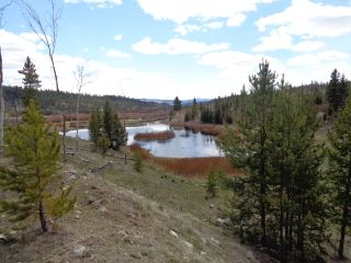 Photo 16: LOT 1 TUNKWA LAKE ROAD: LOGAN LAKE Land Only for sale (SOUTH WEST)  : MLS®# 139085