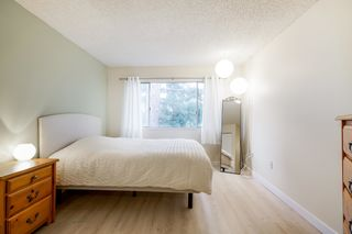 """Photo 9: 303 5664 200 Street in Langley: Langley City Condo for sale in """"Langley Village"""" : MLS®# R2624144"""