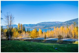 Photo 85: 5046 Sunset Drive: Eagle Bay House for sale (Shuswap Lake)  : MLS®# 10107837