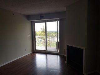Photo 5: 201 9640 105 Street in Edmonton: Zone 12 Condo for sale : MLS®# E4264251
