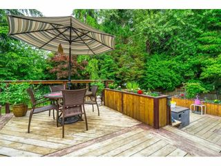 """Photo 30: 21387 87B Avenue in Langley: Walnut Grove House for sale in """"Forest Hills"""" : MLS®# R2585075"""