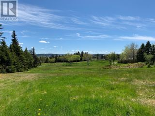 Photo 15: 52 Pitchers Path in St. John's: Vacant Land for sale : MLS®# 1233465