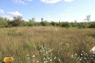 Photo 4: Lt 27 Ramblewood Trail in Kawartha Lakes: Rural Bexley Property for sale : MLS®# X4857401