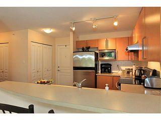 Photo 14: 413 1150 E 29TH Street in North Vancouver: Lynn Valley Condo for sale : MLS®# V1053192
